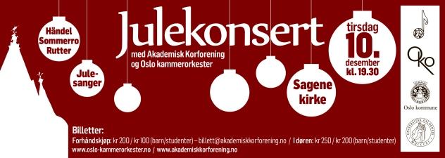 Julekonsert 2013 løpeseddel